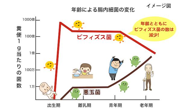 年齢による腸内細菌の変化