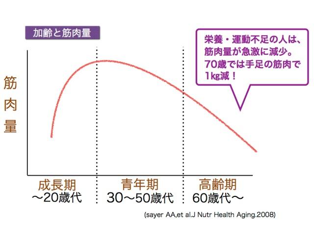 美らプロテイン加齢と筋肉量グラフ