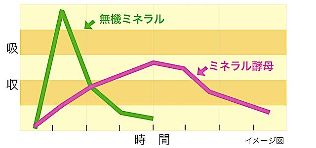 ミネラル吸収グラフ